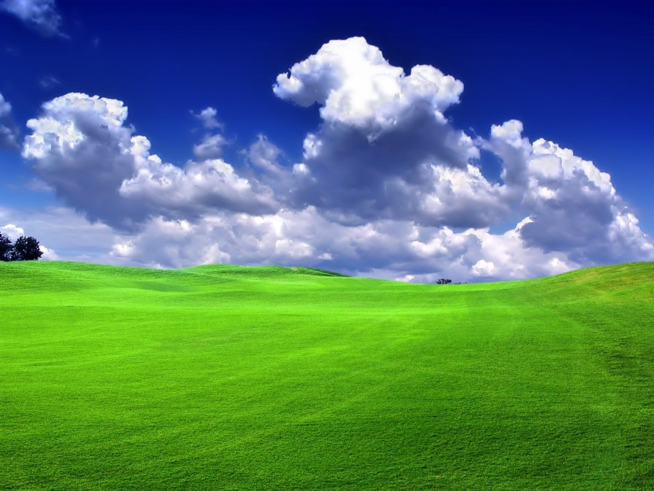 green-grass-blue-sky.jpeg - Green-grass-blue-sky.jpeg - GML Total Lawn Care